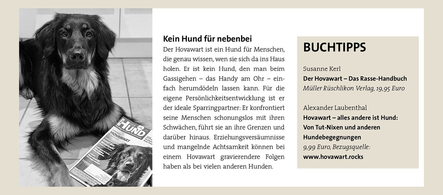 Buchtipp Hovawart - alles andere ist Hund