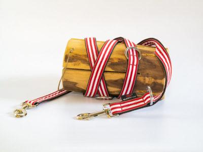 Hundeleine in der Farbe rot weiß vor einem dekorativen Hinterfrund