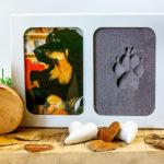 Foto und Pfotenabdruck eines Hundes in einem Echtholzrahmen vor dekorativem Hintergrund
