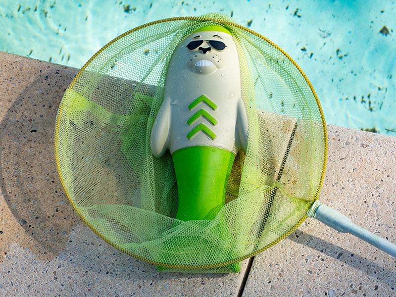 Wasserspielzeug für den Hund im Fischernetz