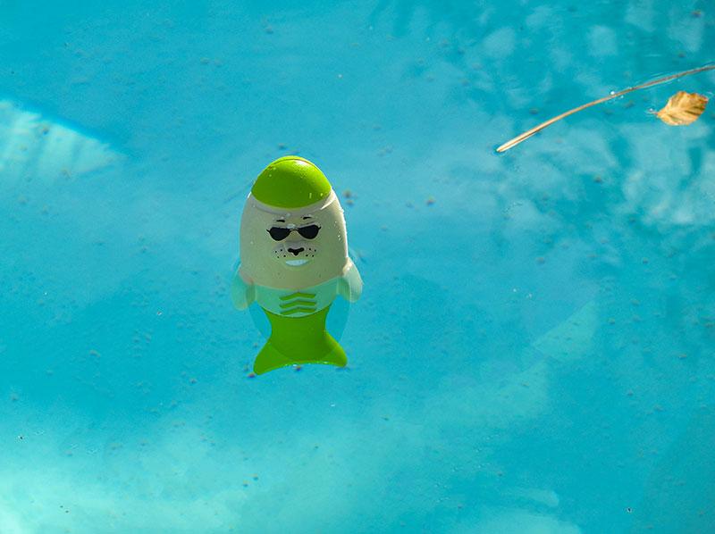 Captain Blubber ungiftiges Wasserspielzeug steht aufrecht im Wasser, Hundespielzeug