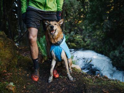 Wind und Wasserdichte Hunde Jacke