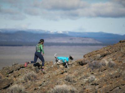 Diese ultraleichte, winddichte und wasserabweisende Jacke ist die ideale Outdoorjacke für deinen Hund und eure Abenteuer