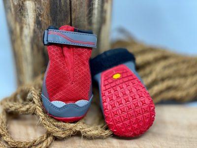 Schuhe für den Hovawart