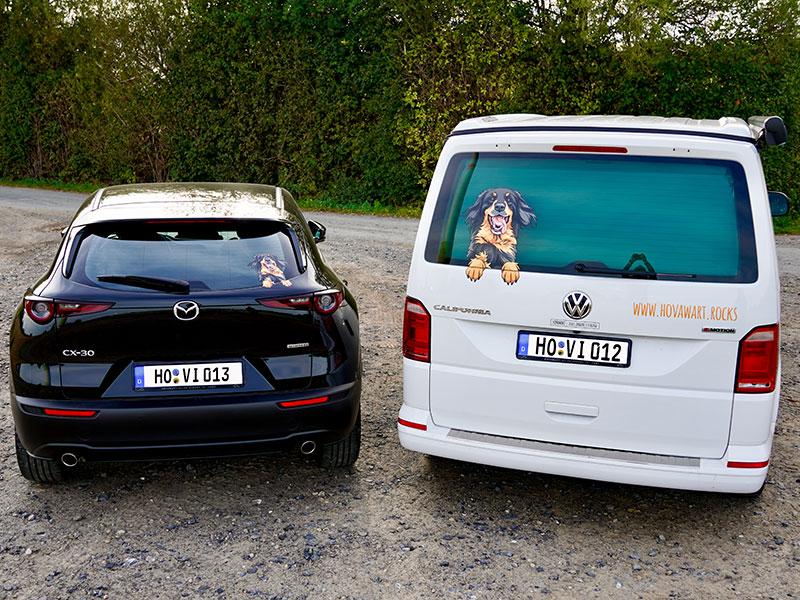Hovawartaufkleber in zwei Größen auf einem VW Bus und einem Mazda CX30