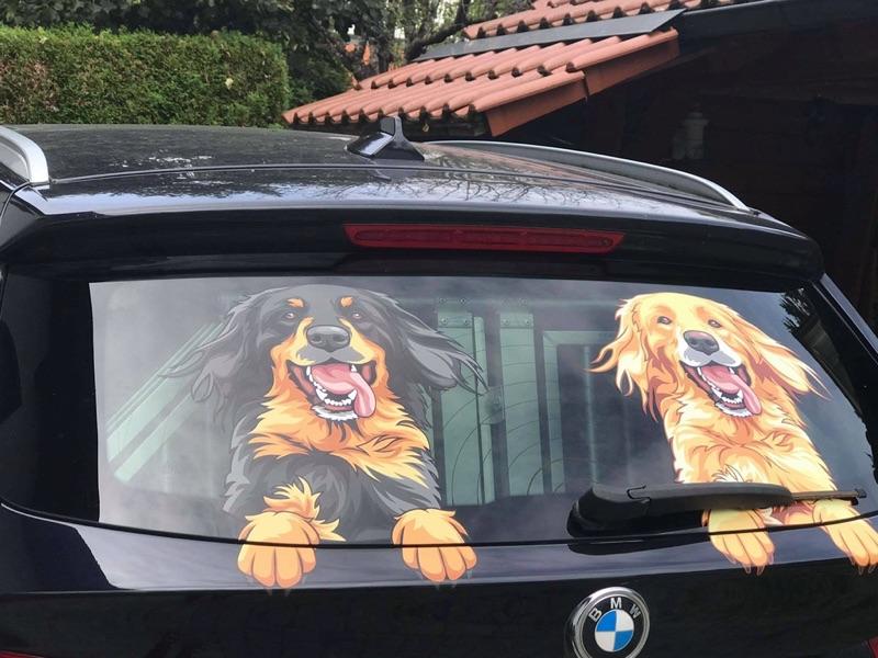 Schwarzmarkener und Blonder Hovawart Aufkleber auf einem BMW