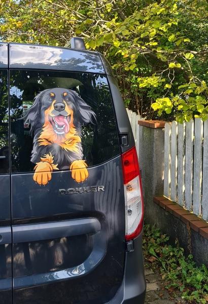 Hovawart Aufkleber auf einem Dacia Dokker