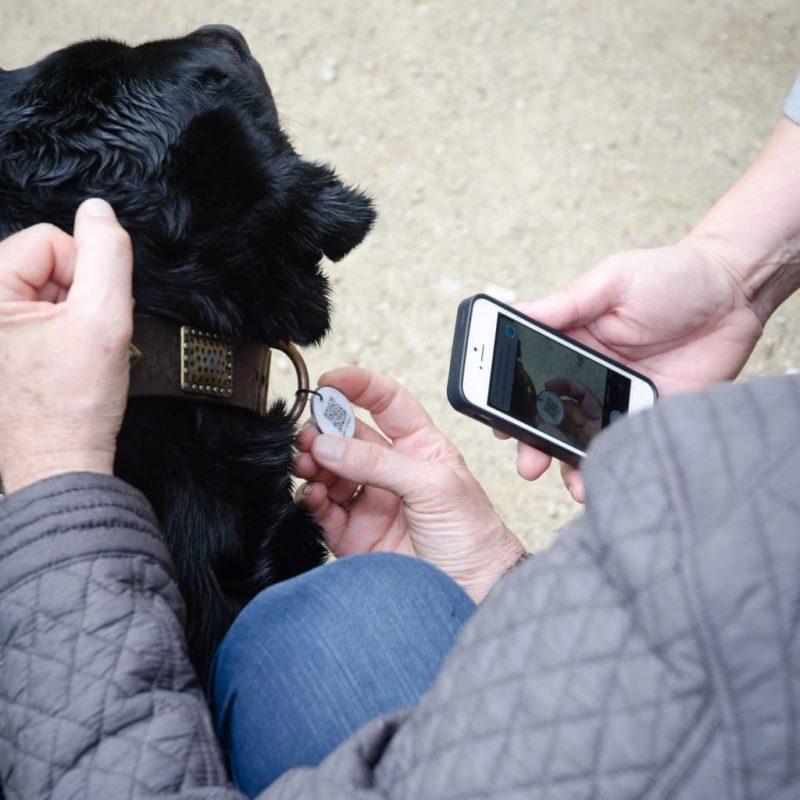 Hundemarke mit QR Code für ein schnelles auffinden deines Hundes