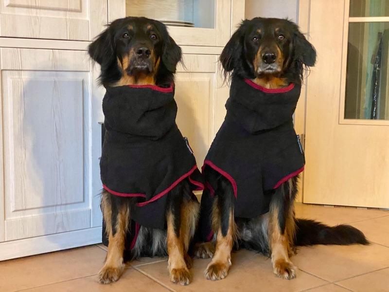 Der Hundebademantel f+r grosse und lange Hunde