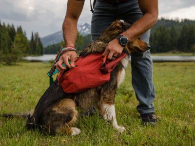 Hunde Rucksck für Wanderungen oder Tagestouren
