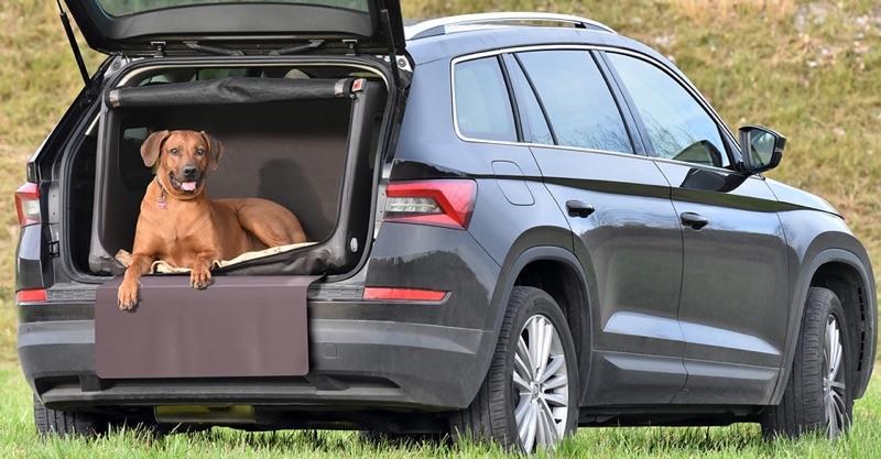 Hundebox mit Airbagfunktion für grosse Hunde