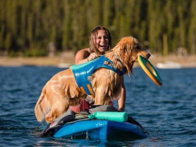 Sicherer Auftrieb für deinen Hund auf dem Wasser mit einer Schwimmweste