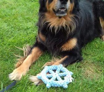 Handgefertigtes vom TÜV zertifiziertes Hundespielzeug Skipper mit einem Hovawart
