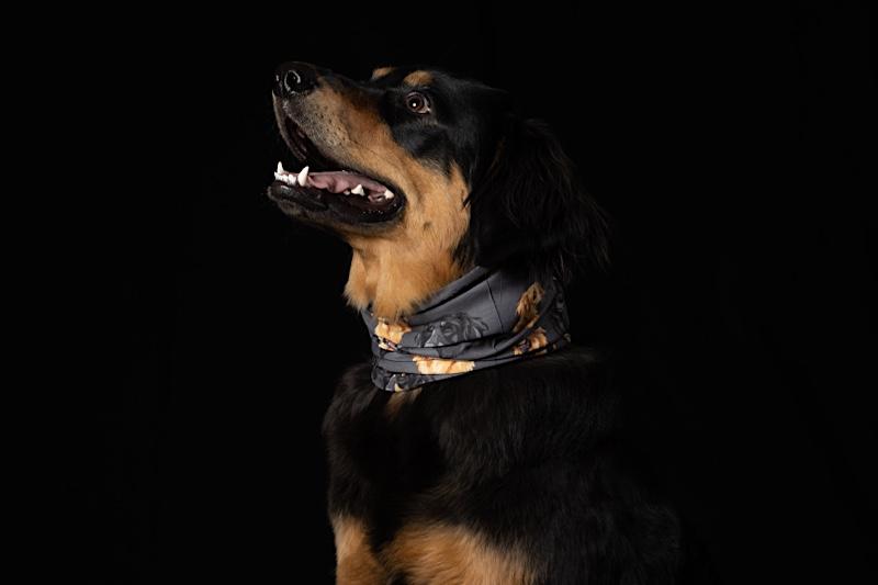 Das Erste FairTrade hergestellte HOVI-Multifunktionstuch für Dich und Deinen Hund!