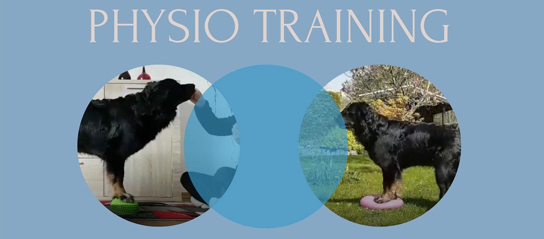 Physio mit deinem Hund
