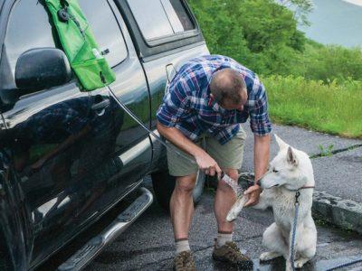 Outdoor Hundedusche, dem Hund die Pfoten säubern